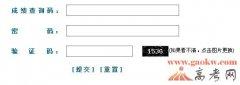 新民网2013年上海高考成绩查询入口三