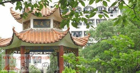 江西宜春风景区茶艺馆