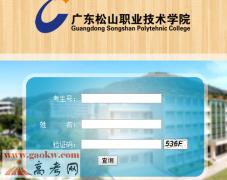广东松山职业技术学院录取查询
