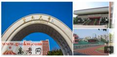 暨南大学2016年录取分数线