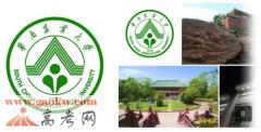 华南农业大学2016年录取分数线