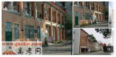 广西艺术学院2016年录取分数线