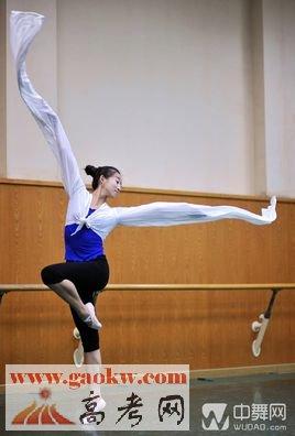 音乐与舞蹈学专业排名2016_音乐与舞蹈学专业好的大学有哪些?