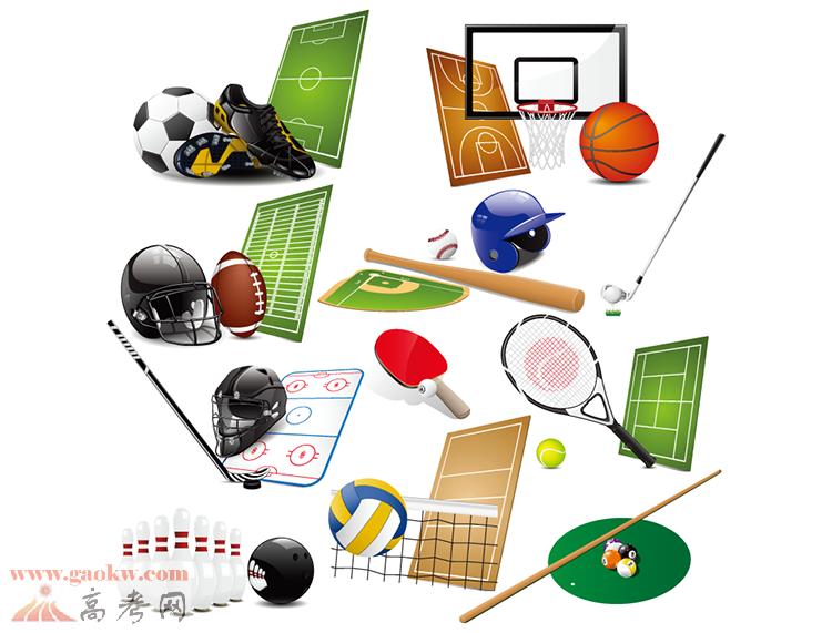 计算机应用技术和运动人体科学基础知识,能从事体育装备设计制造的