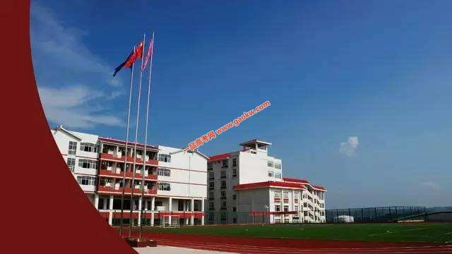 广西中医药大学赛恩斯新医药学院录取分数线