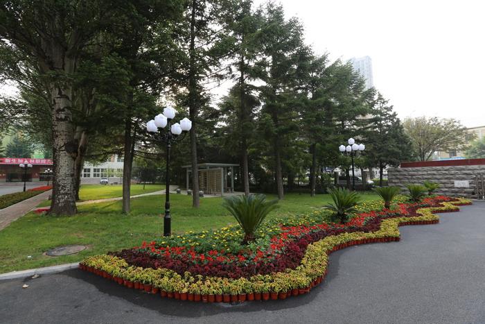 辽宁林业职业技术学院2018录取分数线图片