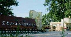 黑龙江三江美术职业学院2020年录取分数线(附2017-2019年分数线)