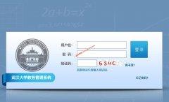 武汉大学教务处,教务管理系统