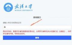 武汉大学2019年录取结果查询