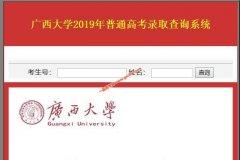 广西大学2019年高考招生录取查询系统
