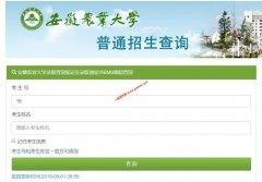 安徽农业大学2019年本科生录取查询系统已经开通