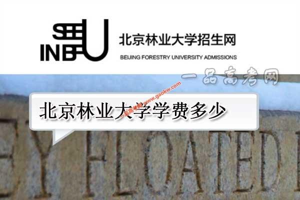 北京林业大学学费多少