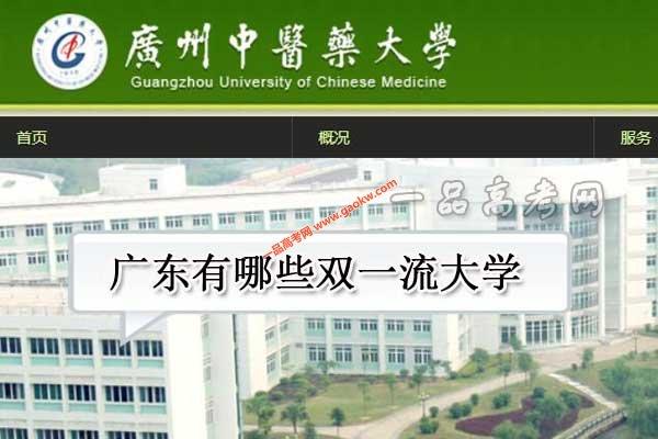 广东有哪些双一流大学(2所世界一流大学,5所世界一流学科高校)