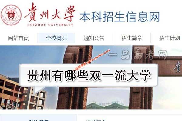贵州有哪些双一流大学(0世界一流大学,1所世界一流学科高校)