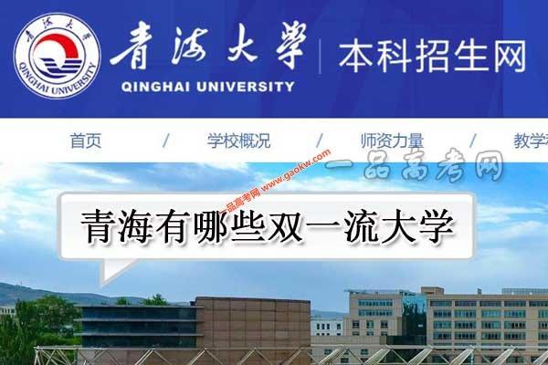青海有哪些双一流大学(1所世界一流学科高校)