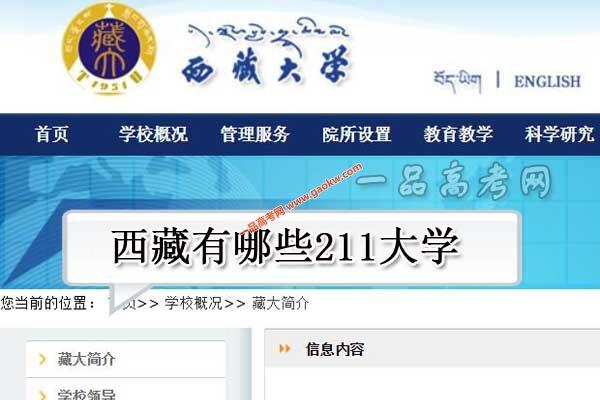 西藏有哪些211大学(共1所211高校)