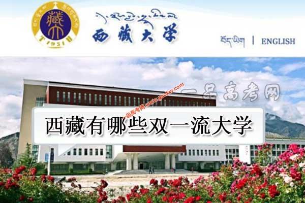 西藏有哪些双一流大学(1所世界一流学科高校)
