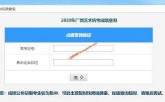 广西2020年艺术类专业统考成绩查询办法