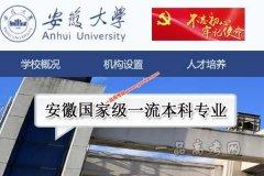 安徽省高校入选国家级一流本科专业建设点名单 共18所学校 124个专业
