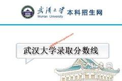 武汉大学2020年录取分数线(附2017-2019年
