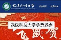武汉科技大学2019年录取分数线(附2017-2018年分数线)