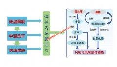 南京农业大学周光宏教授团队成果获国家科技进步二等奖