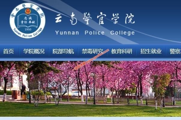 云南警官学院录取分数线