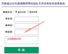 2020年河南高考艺术体育统考成绩查询官方入口
