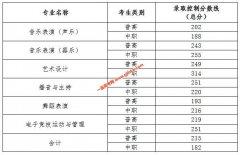 四川文化艺术学院2020年四川高职单招录取控制分数线