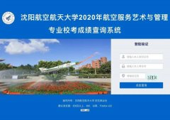 沈阳航空航天大学2020年航空服务艺术与管理专业校考成绩正式发布