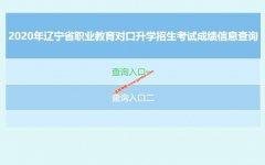 2020年辽宁省职业教育对口升学招生考试成绩信息查询时间及渠道