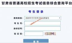 2020年甘肃艺术类专业校考合格考生成绩查询