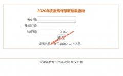 2020年安徽高考录取结果查询