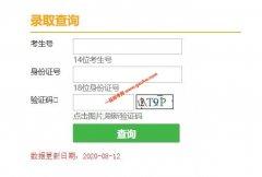 2020年天津高考录取查询(艺术体育类及提前招生院校)