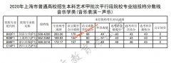 2020年上海本科音乐学类(音乐表演-器乐,声乐)甲批平行段院校专