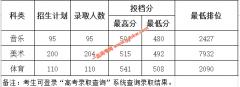 惠州学院2020年艺术类专业录取分数线