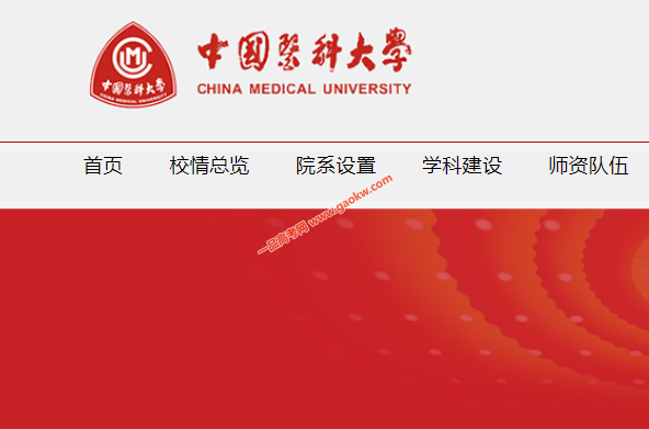 中国医科大学录取查询