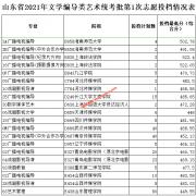 2021年山东艺术统考批志愿投档情况表(第1次)