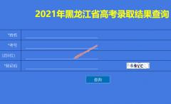 2021年黑龙江省高考录取结果查询