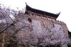 武汉大学是几本
